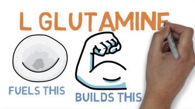 L GLUTAMINE : WHAT DOES GLUTAMINE DO